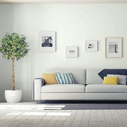 Hydrangea Floret