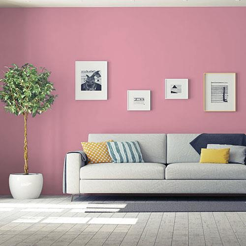 Madagascar Pink
