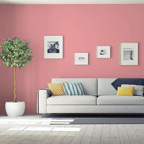 Pink Clay Pot