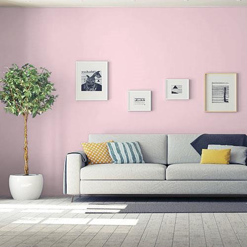 Pink Pail