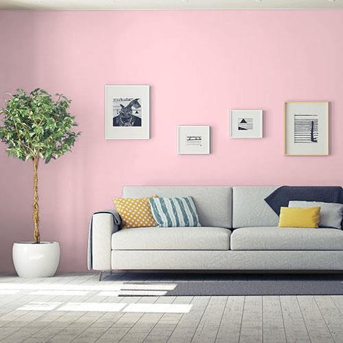 Pleasing Pink