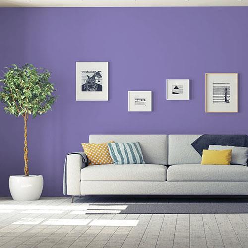 Purple Rhapsody